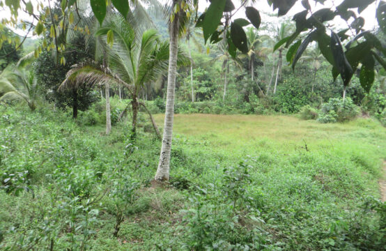 Land for sale at Pitagala