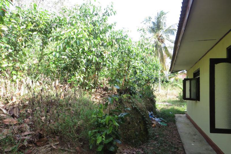 3 Bedroom house in Miriswatta for sale | Induruwa