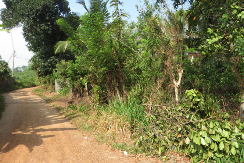 3 Bedroom house in Miriswatta for sale | Induruwa