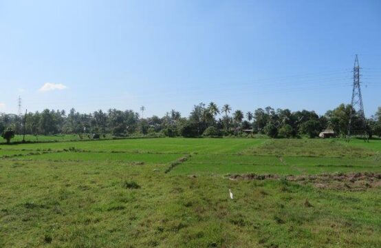 Property for sale overlooking Paddy