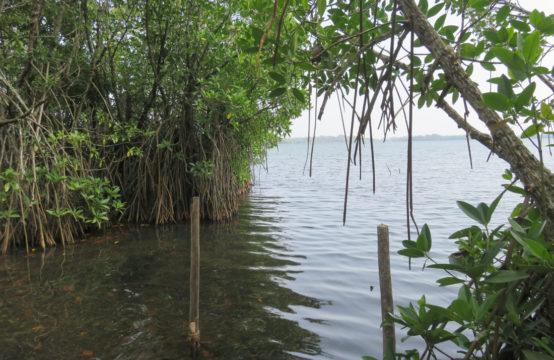 Picturesque views of Koggala lake