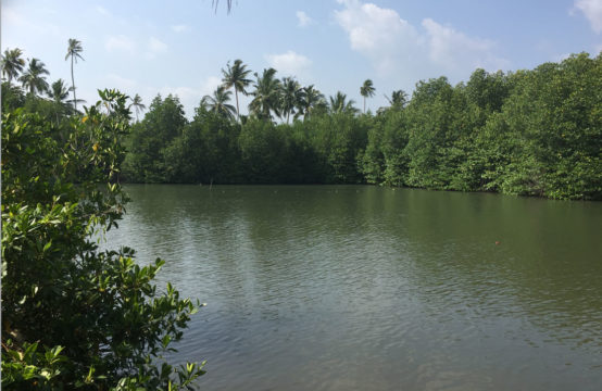 River land for sale at a surfing location