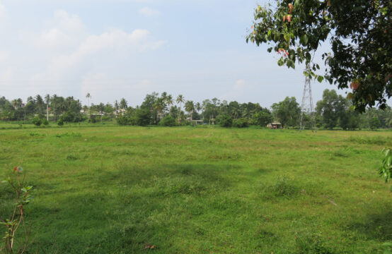 Land for development with paddy field view