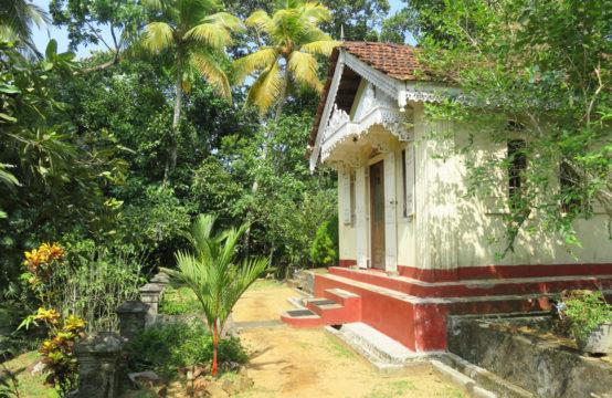 Sri Lankan style house with a tea plantation for sale