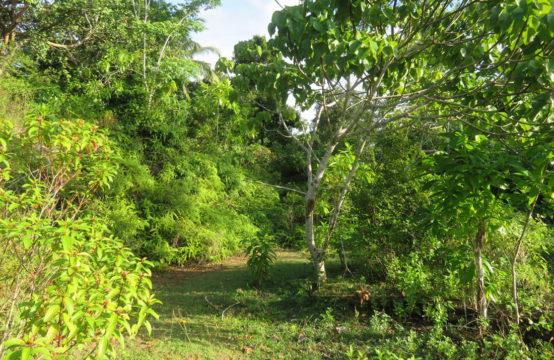 Development land closer to Talpe beach