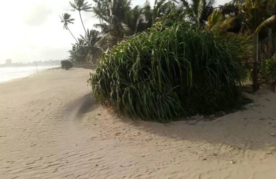 Beachfront bare-land for sale