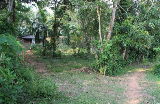 Perfect location for a villadevelopment – 1 Acre