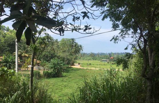 Development land for sale close to Mirissa beach