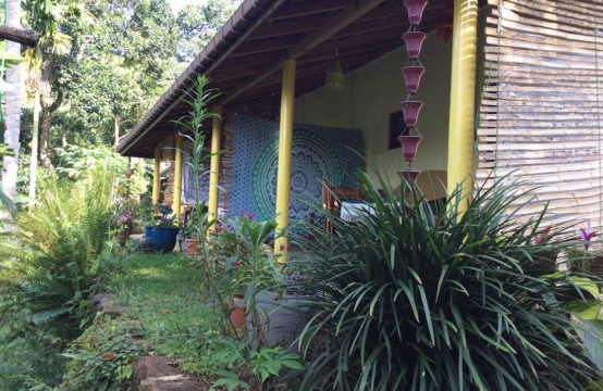 Guest house and land for sale – 6 Acres