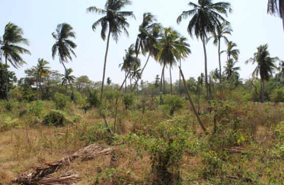 Land for sale 4.9 Acres