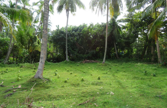 Development land for sale with 4 bedroom house