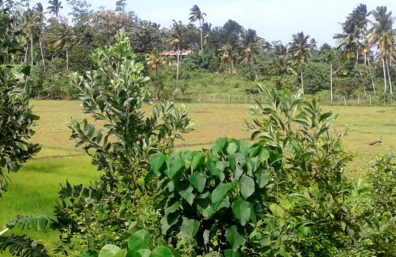 Land with beautiful views popular area
