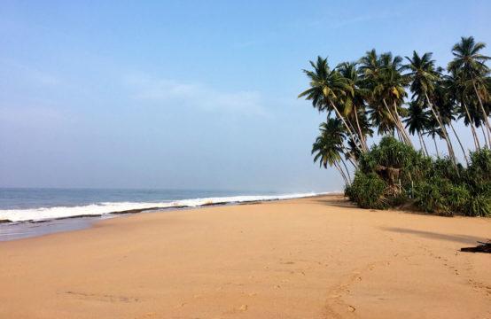 Land for sale near Kosgoda beach