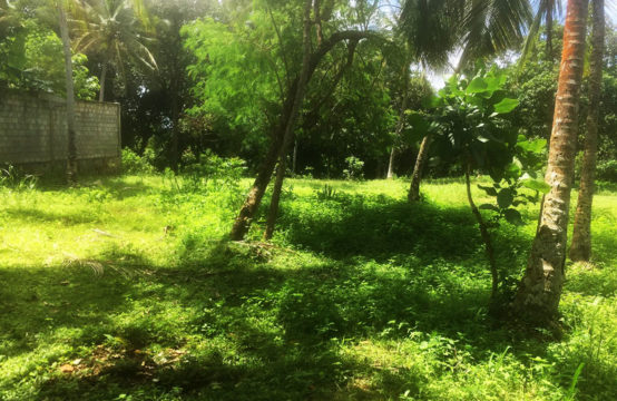 Land for sale close to a famous beach &#8211&#x3B; 1.7 Acres