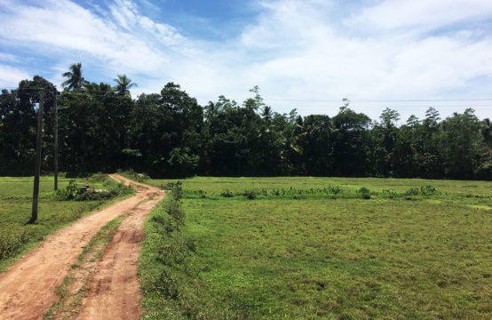 Paddy field view property for sale close to beach