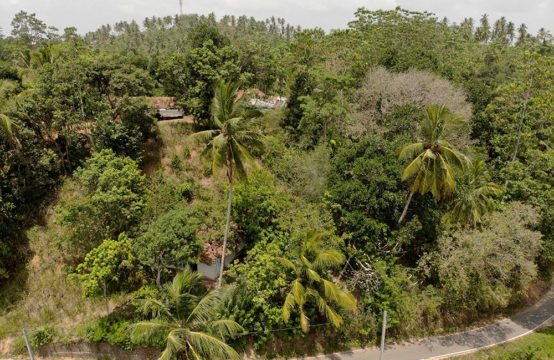 Development land for sale close to Mirissa beach