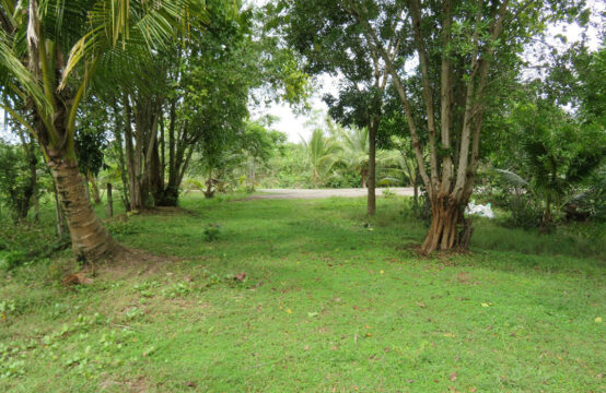 Land for sale facing Madu river – 3 Acres