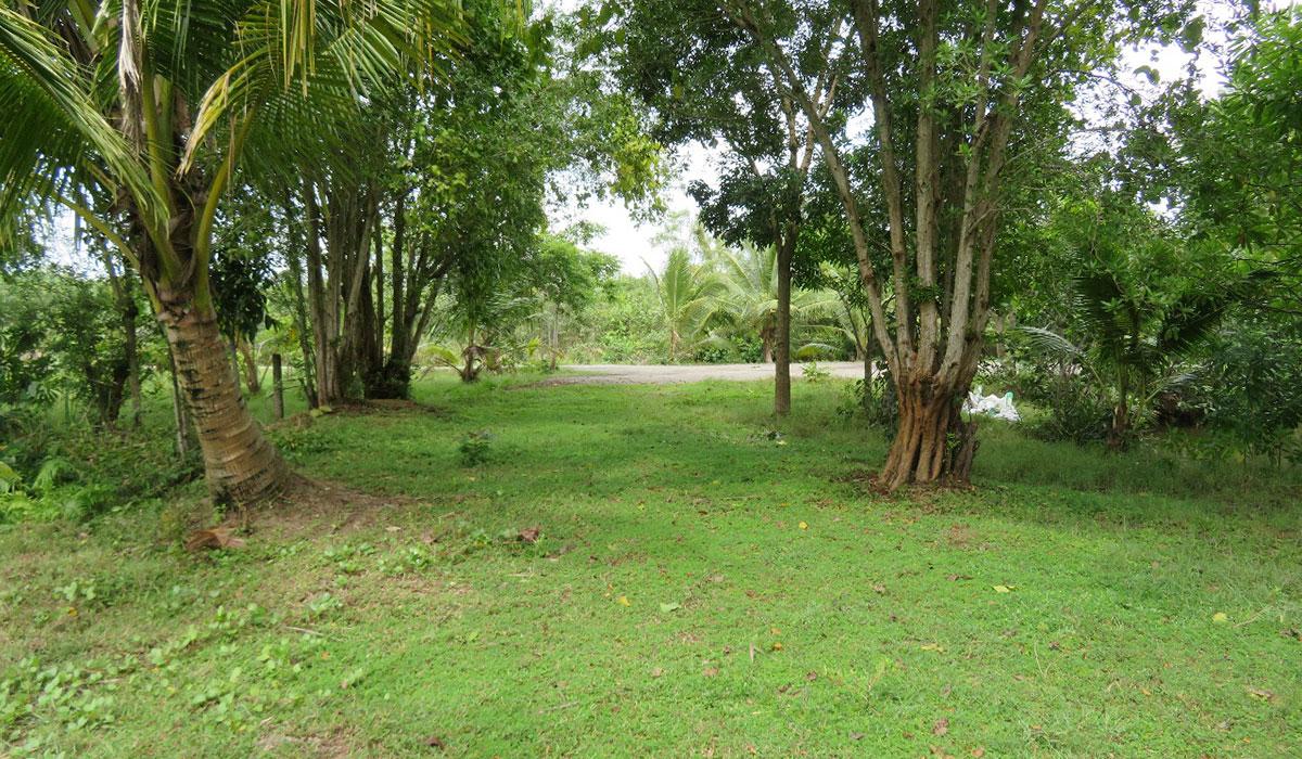 Land for sale facing Madu river – 3 Acres