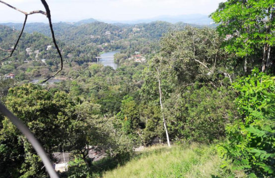 Land for sale with panoramic views of Mahaweli river
