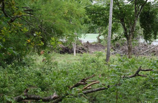 Land for sale overlooking Mawella lagoon
