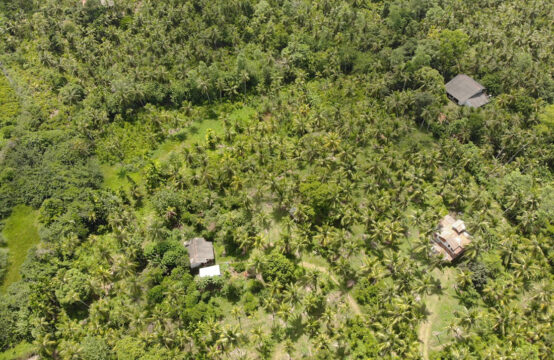 Development land for sale with Cinnamon and Coconut – 8 Acres