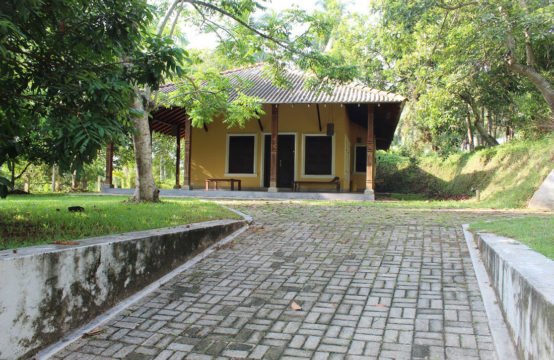 Coconut land with 2 bedroom villa for sale – 11.5 Acres