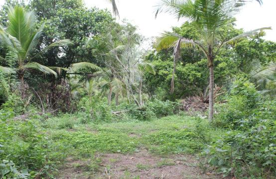 Development land for sale at Hirana