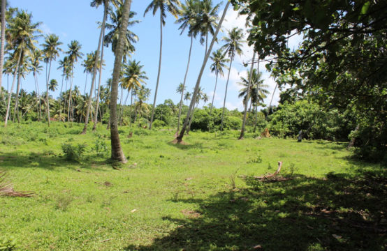 Land for sale close to Weligama beach – 11 Acres