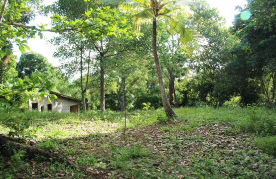 Land for sale in a popular area