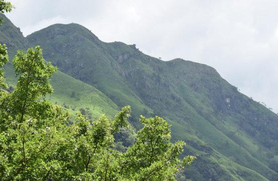 Development land for sale close to Ravana Cave