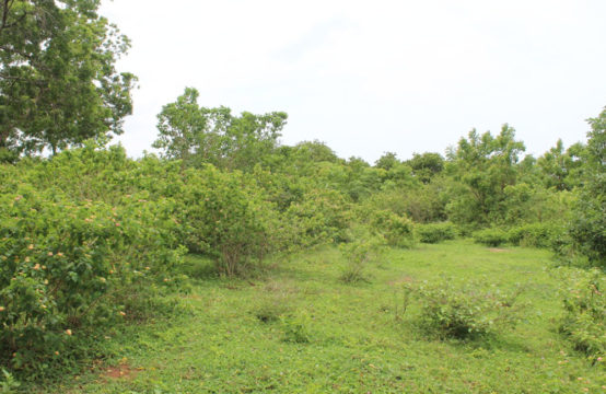 Land for sale 2 Acres