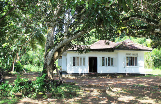 4 Bedroom house for sale with paddy field view