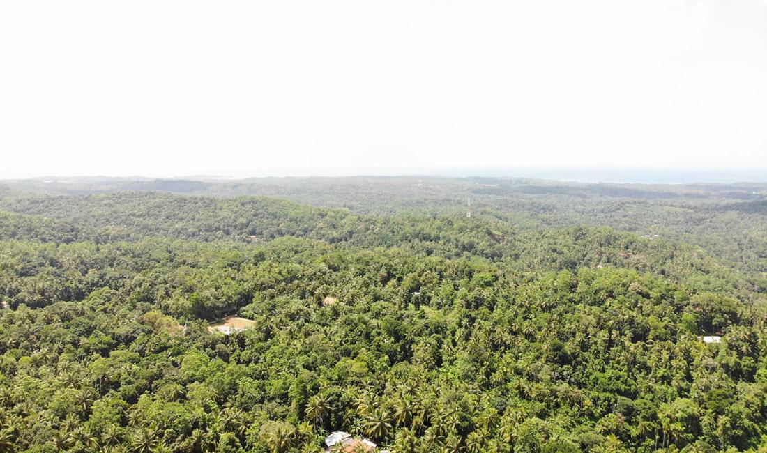 Land for sale in Bodarakanda – 3.75 Acres