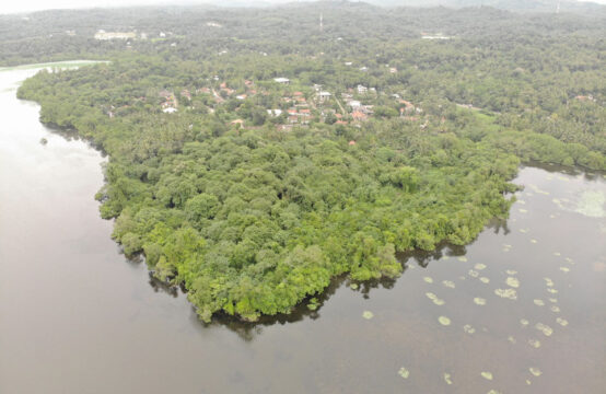 Perfect resort property on Mawella lagoon – 3.1 Acre