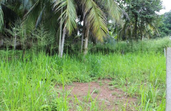 Development land for sale close to Hiriketiya Bay