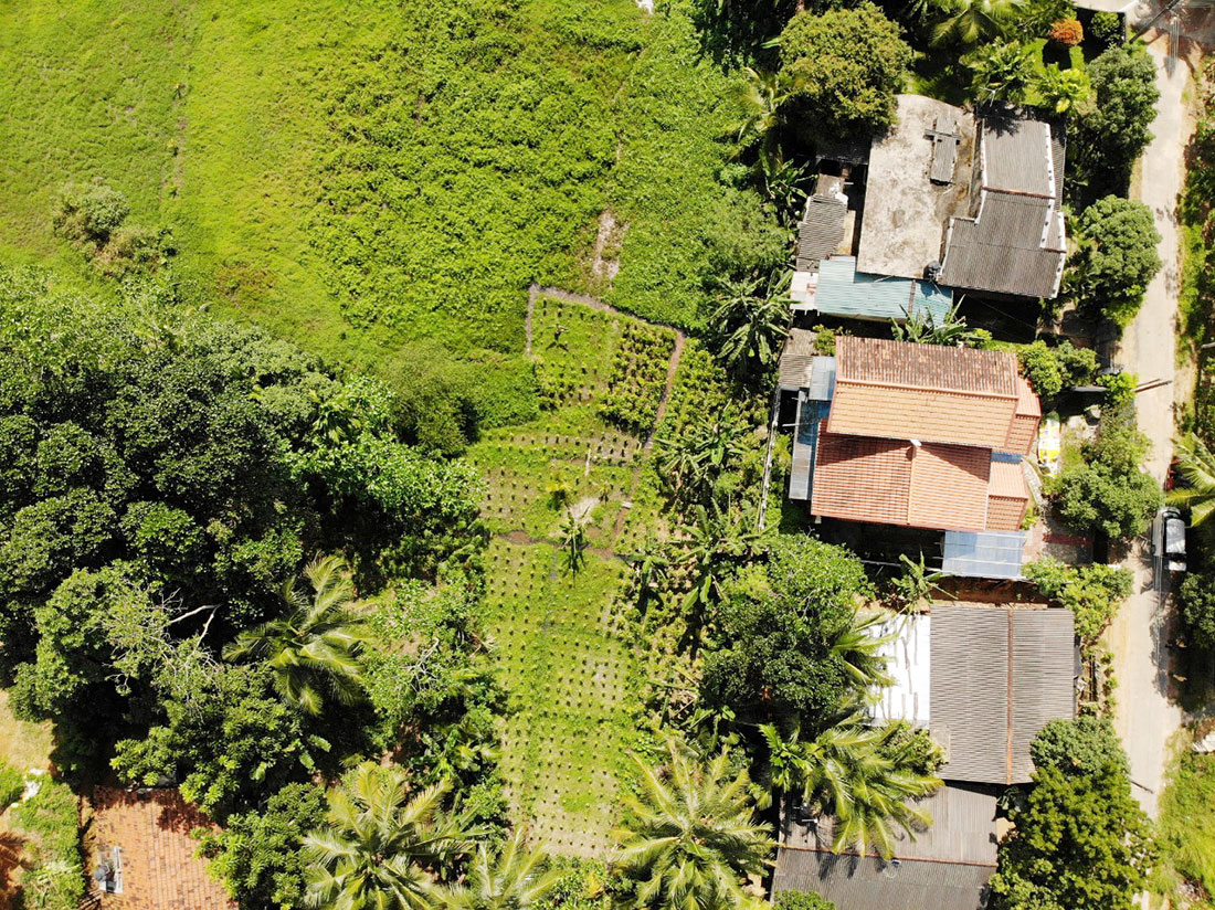 Newly built house for sale overlooking paddy field