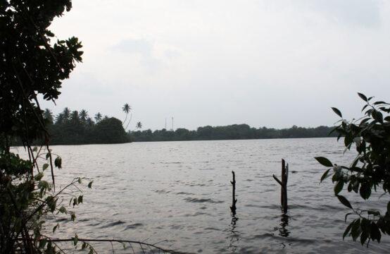 Land for sale on Koggala lake