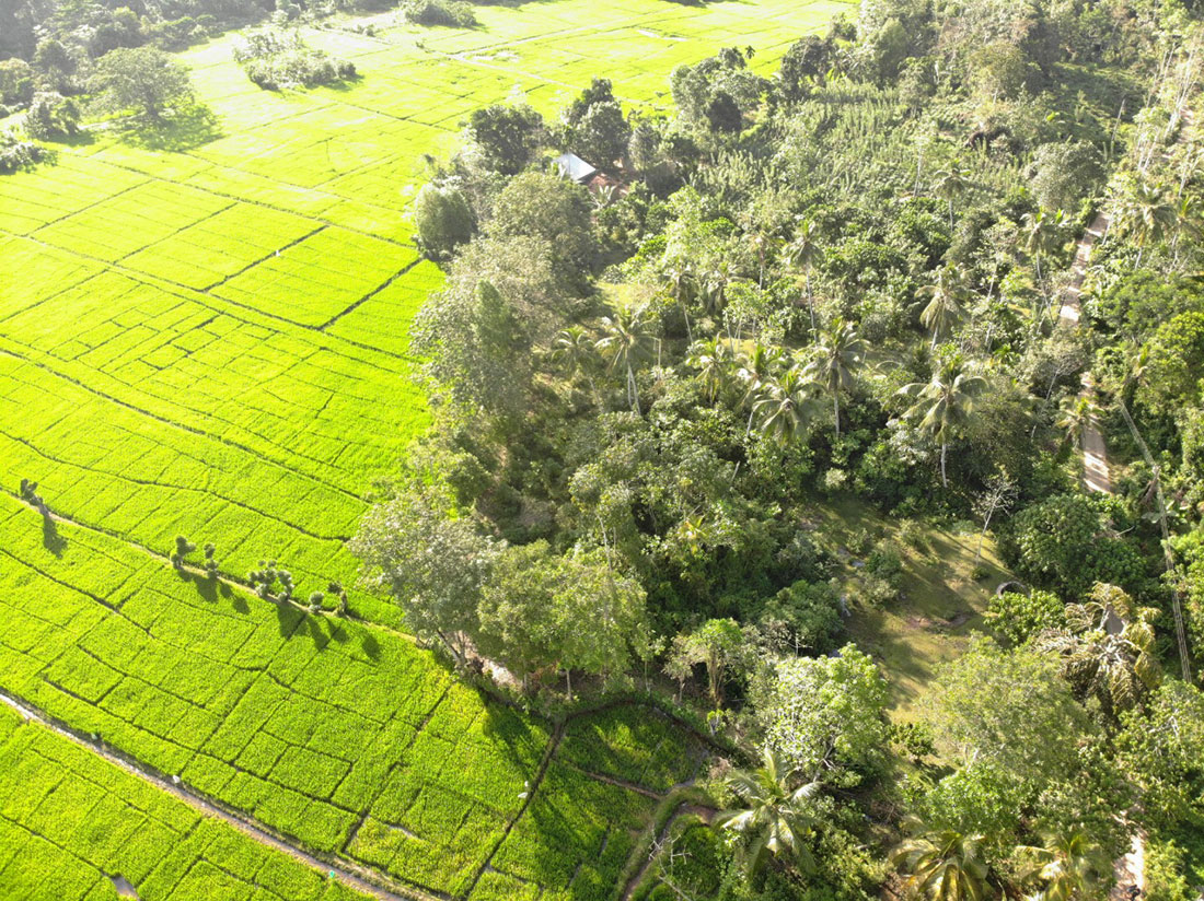 Land with beautiful views in a village location 1.4 Acre