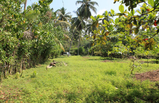 Land for sale close to Kosgoda beach