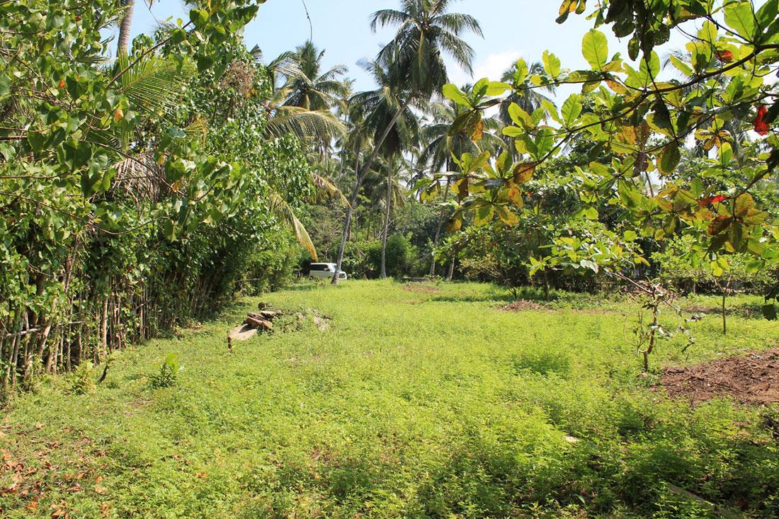 Land for sale close to Kosgoda beach