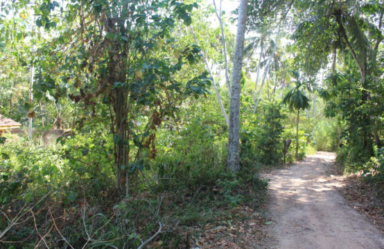 Investment land located close to the beach