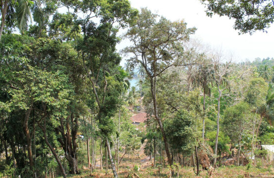 Land for sale in a popular area of Hiriketiya