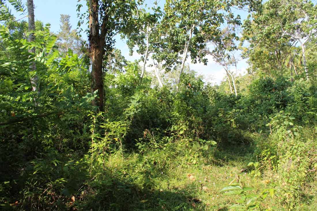 Development land for sale in Galagama 3 Acres