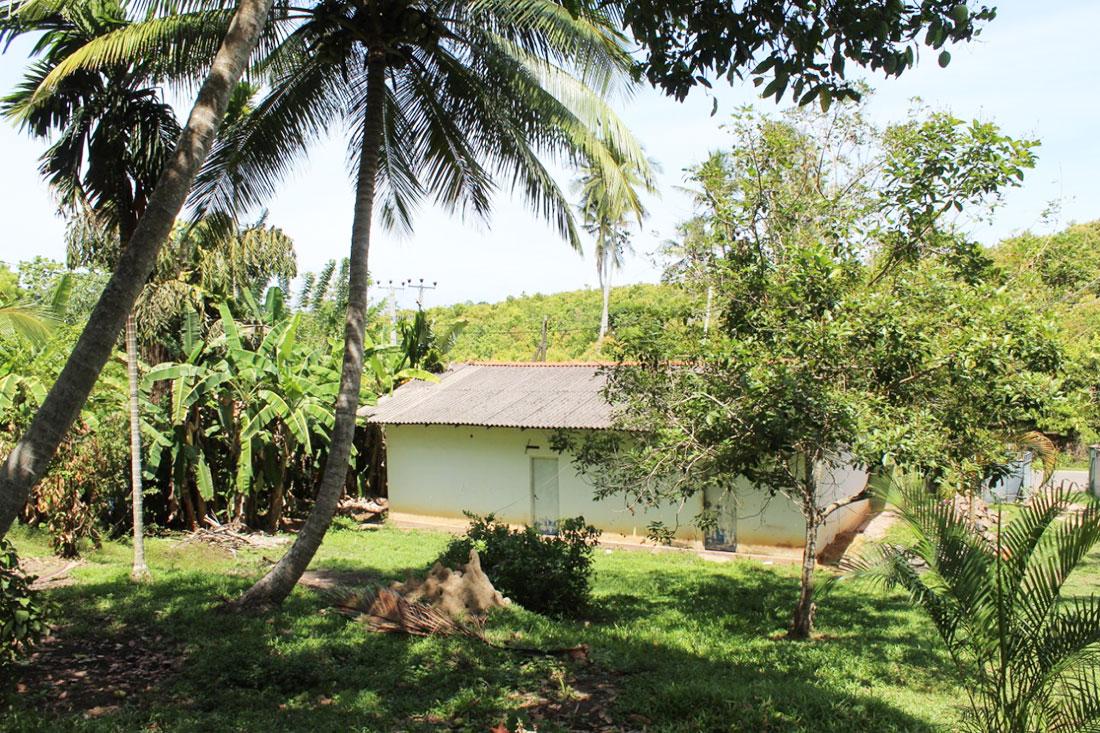 Land for sale with shop premises