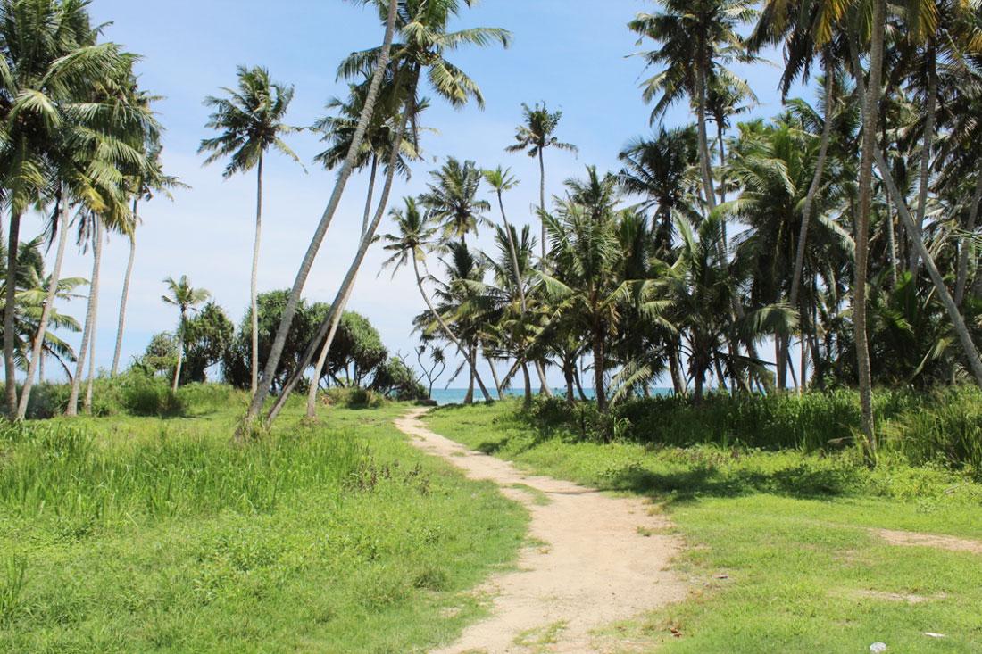 Land for sale on Ahangama beach