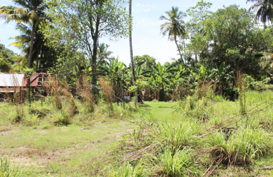 Land for sale in Kathaluwa village