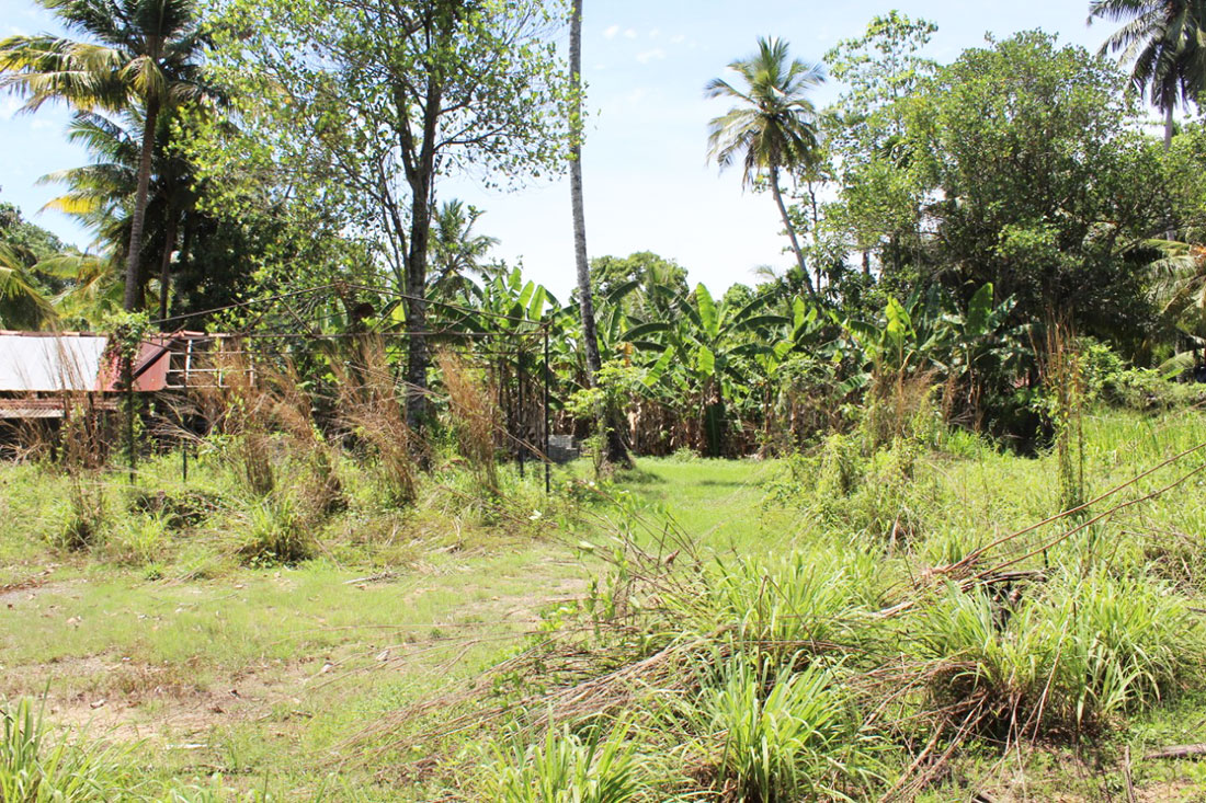 Land for sale in Kathaluwa village