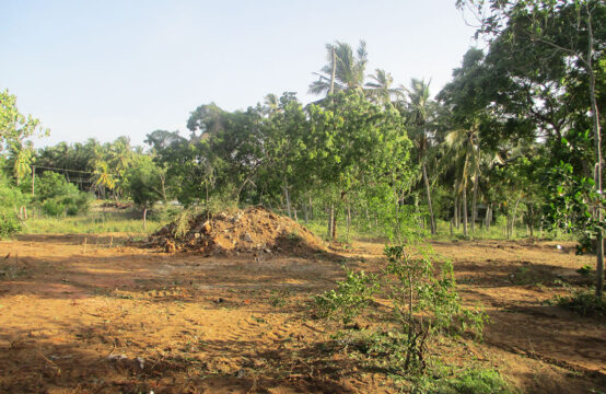 Land for sale close to lake and beach