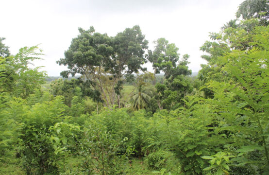 Land for sale close to Galle city