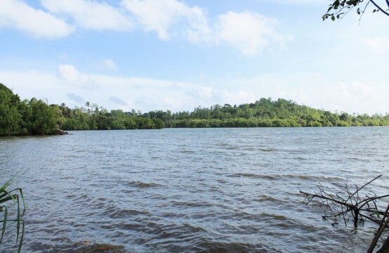 Land for sale overlooking Koggala lake